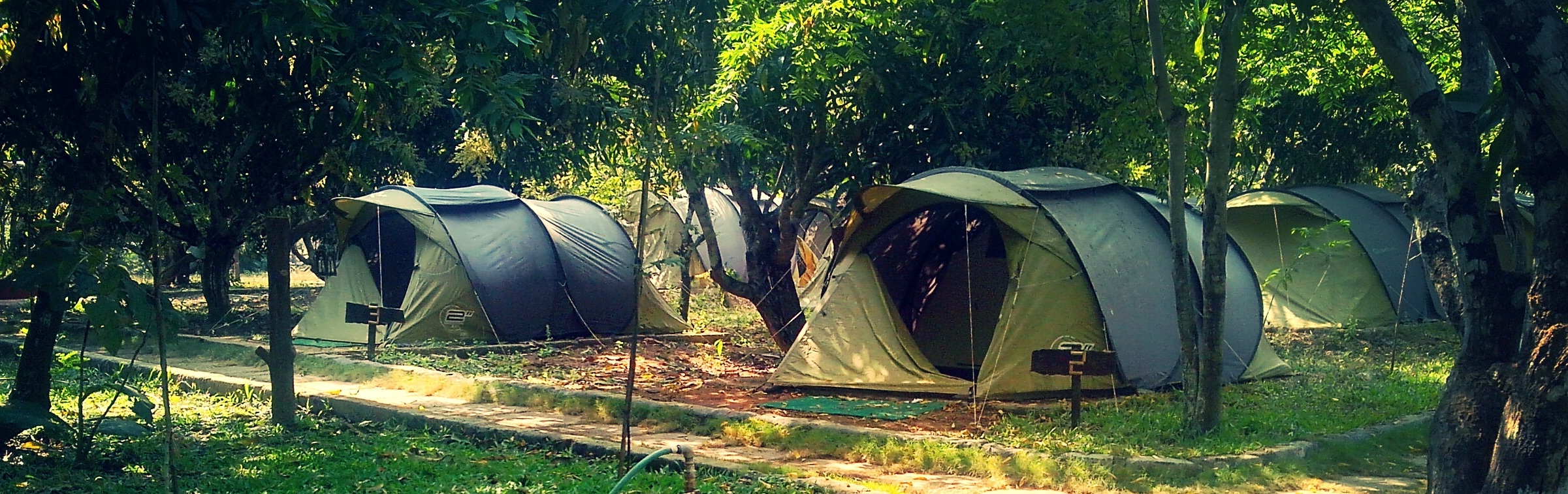 adventure pitch t resorts near Dandeli
