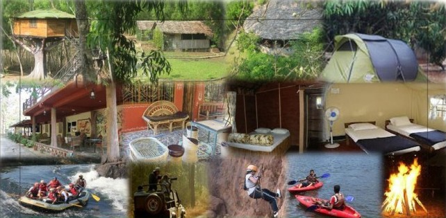 jungle resorts in Dandeli