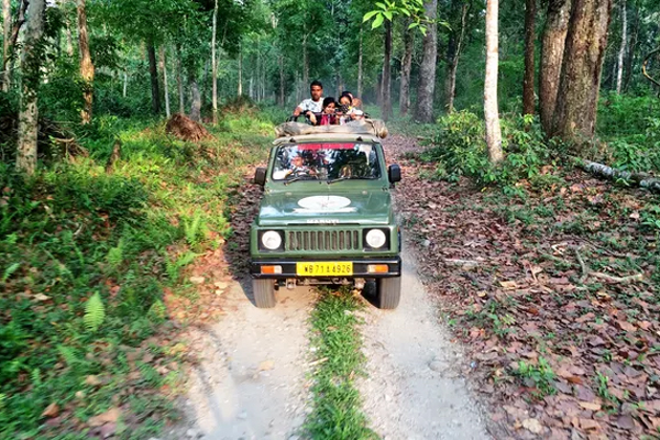 jungle safari at Dandeli